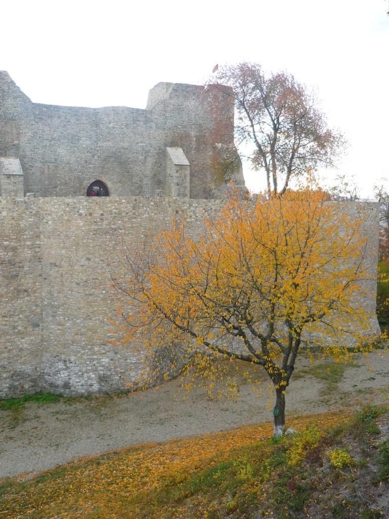 Otoño en Rumanía - Autumn in Romania
