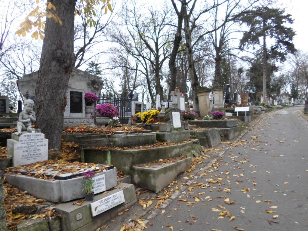 Cementerio central de Cluj
