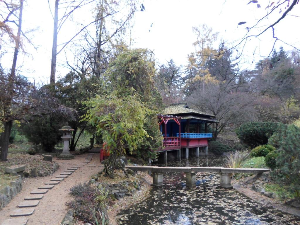 Jardín botánico en Cluj