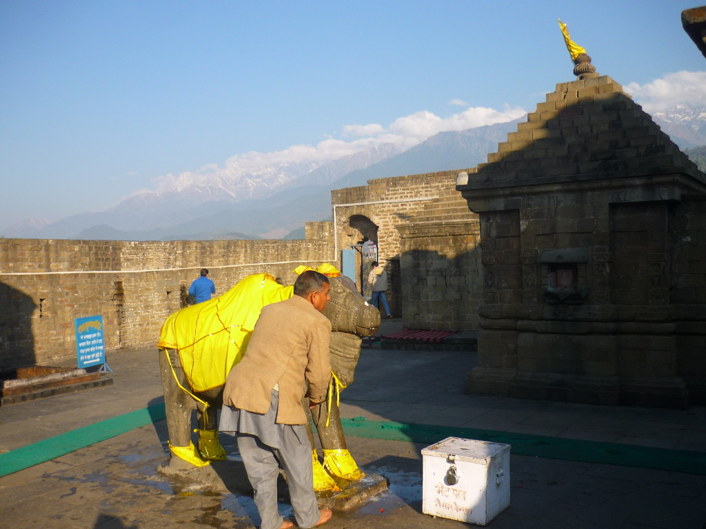 Hindu venerando a Nandi en India