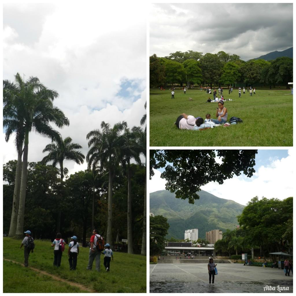 Parque del Este - Parques en Caracas