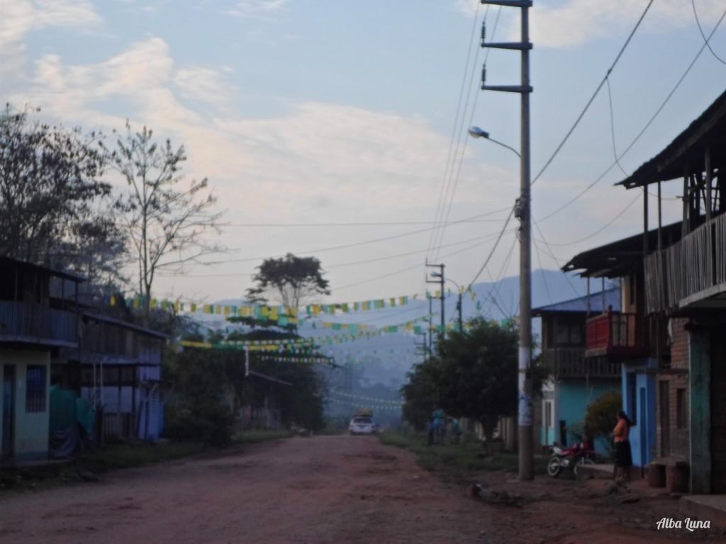 Voluntariado en granja cafetera en Perú