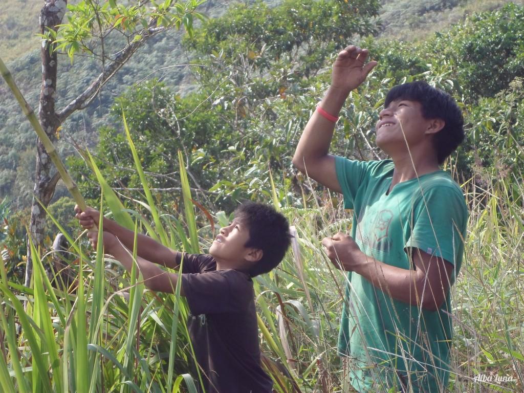 Selva Central voluntariado Perú
